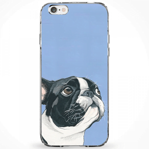 Capinha Pug Color